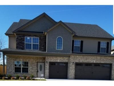 Clarksville Single Family Home For Sale: 655 Sturdivant Dr