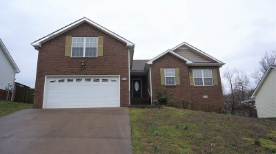 Single Family Home For Sale: 3129 Brook Hill Dr