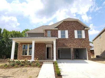 Sumner County Single Family Home For Sale: 112 Picasso Circle