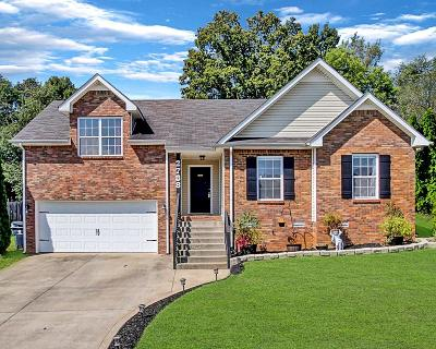 Clarksville Single Family Home For Sale: 2788 Ridgepole Dr