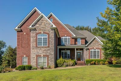 Hendersonville Single Family Home For Sale: 1041 Somerset Downs Blvd