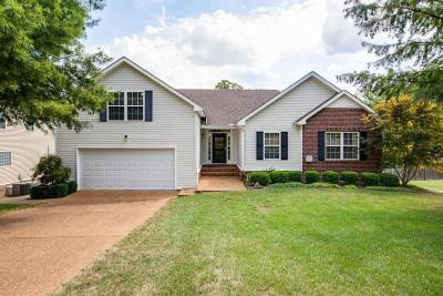 Spring Hill Single Family Home For Sale: 2054 Dinan Ct