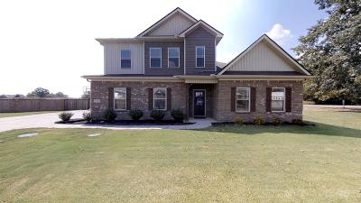 Single Family Home For Sale: 2501 Pinnacle Dr