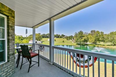 Sumner County Single Family Home For Sale: 169 Dry Fork Rd S