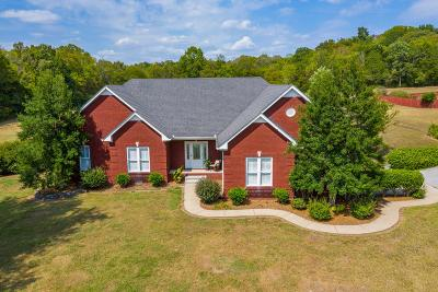 Spring Hill Single Family Home For Sale: 3084 Duplex Rd