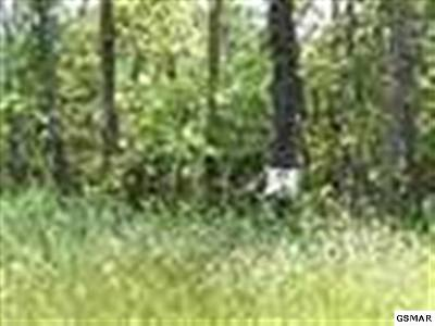 Residential Lots & Land For Sale: Lot 12 Walk In The Tree