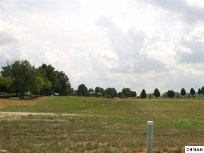 Strawberry Plains Residential Lots & Land For Sale: 629 Running Brook