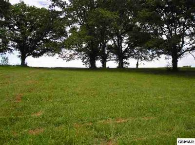 White Pine Residential Lots & Land For Sale: Lot 4r2 Lee Road