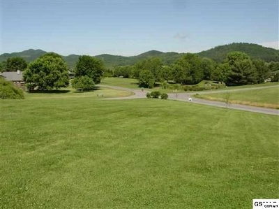 Sevierville Residential Lots & Land For Sale: Lot 9 Deer Field Circle