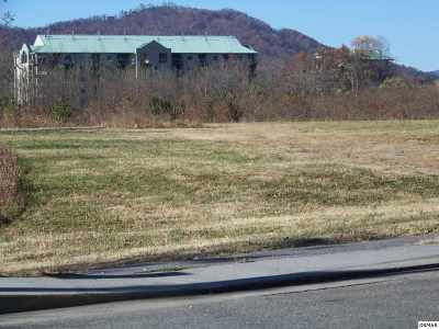 Pigeon Forge Commercial For Sale: Teaster Lane