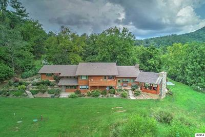 Sevierville Single Family Home For Sale: 4242 Pearl Valley Road