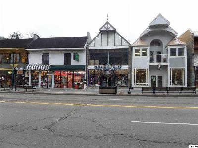 Gatlinburg Commercial For Sale: 606 Parkway
