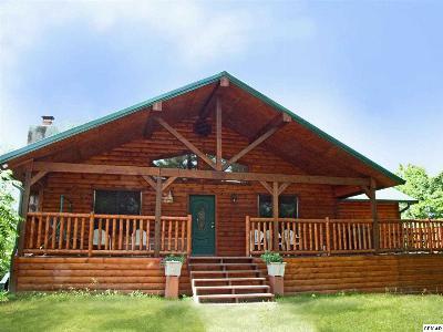 Dandridge Single Family Home For Sale: 2131 Shropshire Hollow Road