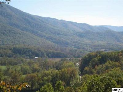 Pigeon Forge TN Residential Lots & Land For Sale: $399,900