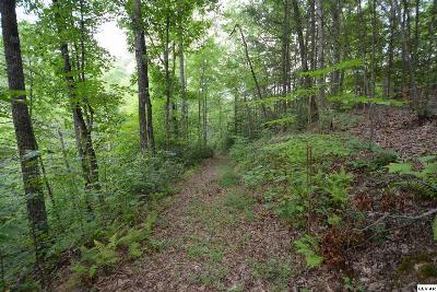 Sevierville Residential Lots & Land For Sale: Parcel 167 Grassy Branch Loop