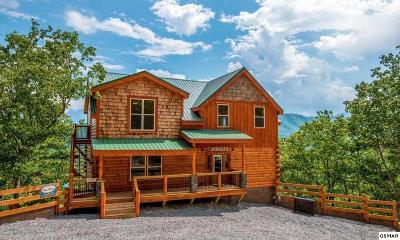 Pigeon Forge Single Family Home For Sale: 2 Sherwood Heights Way