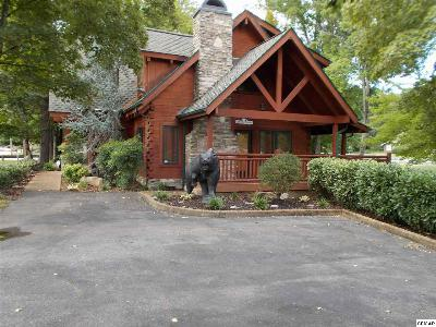 Pigeon Forge Single Family Home For Sale: 4003 S River Road