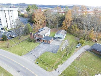 Pigeon Forge Single Family Home For Sale: 223 Sharon Dr.