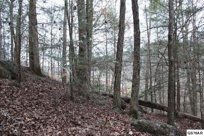 Sevierville TN Residential Lots & Land For Sale: $20,000