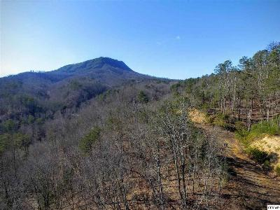 Sevier County Residential Lots & Land For Sale: 1630 Seagle Hollow Rd