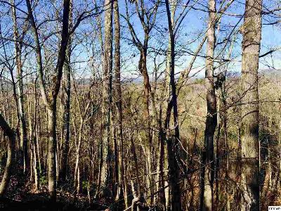 Sevier County Residential Lots & Land For Sale: Lot 15 Tekoa Mtn Way