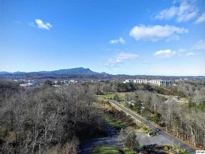 Sevier County Commercial For Sale: 2230 Alpine Village Way