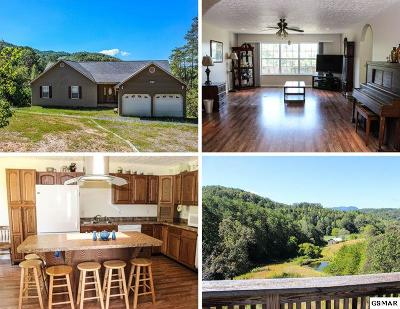 Sevierville Single Family Home For Sale: 3022 Bear Mountain Lane