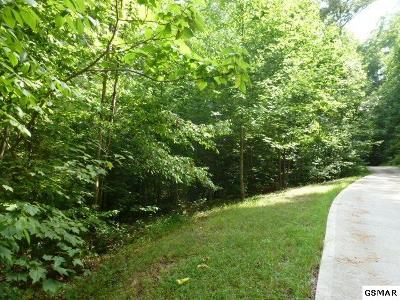 Townsend Residential Lots & Land For Sale: 456 Mt. John Loop Road