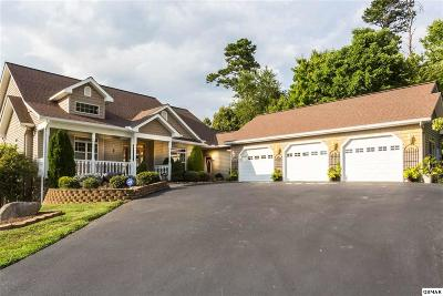 Sevierville Single Family Home For Sale: 2784 English Hills Dr