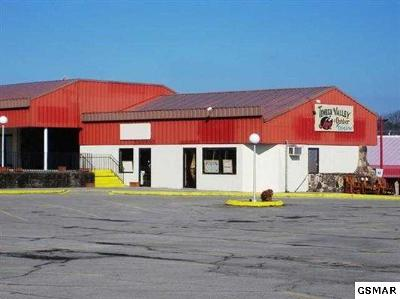 Pigeon Forge Commercial For Sale: 2828 Parkway