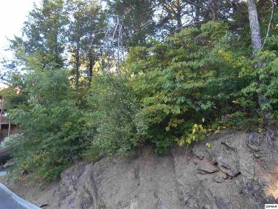Pigeon Forge Residential Lots & Land For Sale: 94r-1 Alpine Mtn