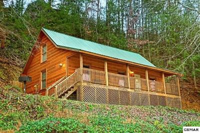 Pigeon Forge Single Family Home For Sale: 619 Pine Mountain