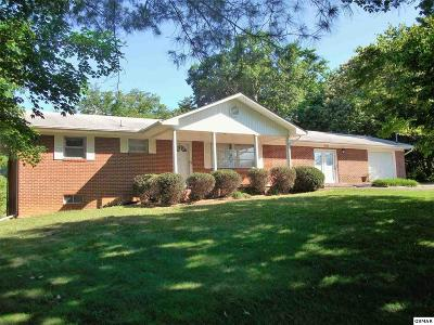Dandridge Single Family Home For Sale: 1134 Newman Riley Dr