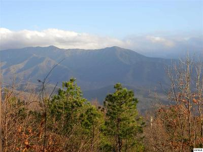Gatlinburg Residential Lots & Land For Sale: Lot 448 Piney Butt Way