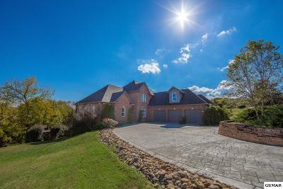 Sevierville Single Family Home For Sale: 119 Swans Ferry Rd