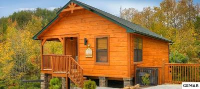 Pigeon Forge Single Family Home For Sale: 913 McMakin Way