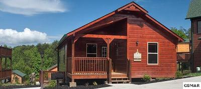 Pigeon Forge Single Family Home For Sale: 938 McMakin