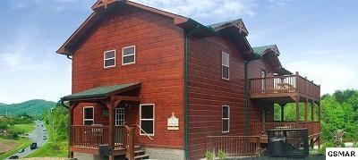 Pigeon Forge Single Family Home For Sale: 942 McMakin