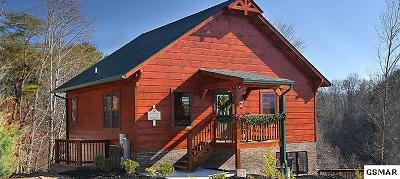 Pigeon Forge Single Family Home For Sale: 939 McMakin