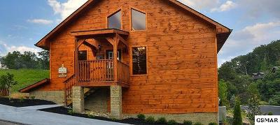 Pigeon Forge Single Family Home For Sale: 910 McMakin