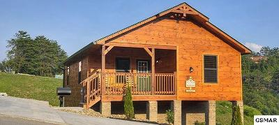 Pigeon Forge Single Family Home For Sale: 922 McMakin