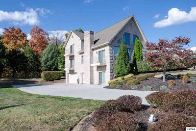Dandridge Single Family Home For Sale: 510 Riverchase Ln