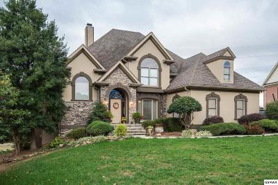 Knoxville Single Family Home For Sale: 12136 Brookstone Drive