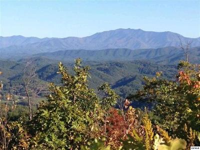 Sevier County Residential Lots & Land For Sale: 21.9 Acres Summit Trails Drive