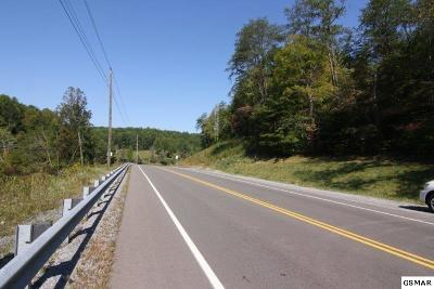 Sevier County Commercial For Sale: Birds Creek Road