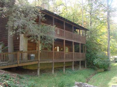 Pigeon Forge Single Family Home For Sale: 704 Golden Eagle Way
