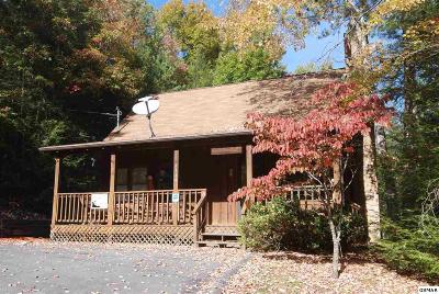 Sevierville Single Family Home For Sale: 2144 Cub Circle