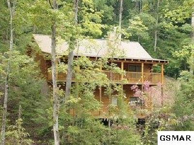 Pigeon Forge Single Family Home For Sale: 607 Eagles Boulevard Way