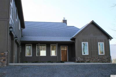 Seymour Single Family Home For Sale: 1656 Dripping Springs Rd.
