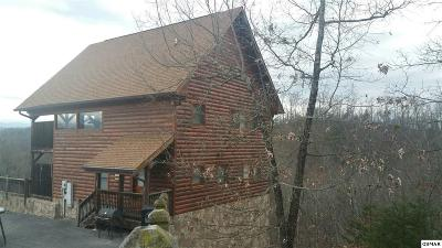 Sevierville Single Family Home For Sale: 1905 Starr View Dr.